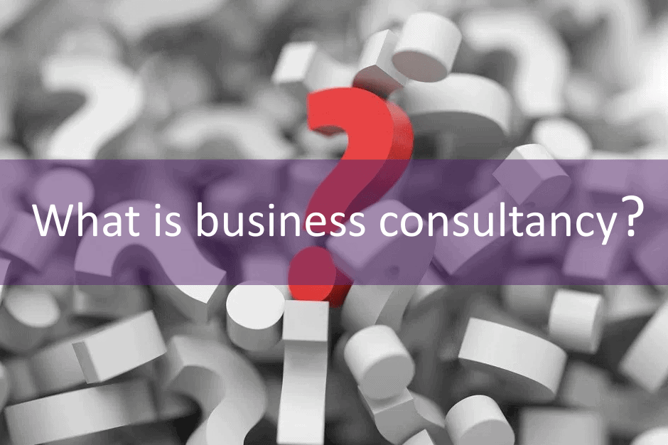 What is a business consultant?